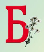 фразеологізми на букву б