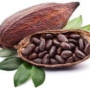 какао цікаві факти