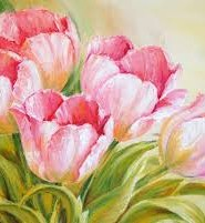тюльпани цікаві факти