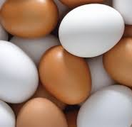 яйце хімічний склад